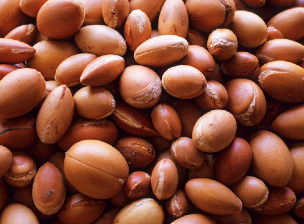 nueces de argan