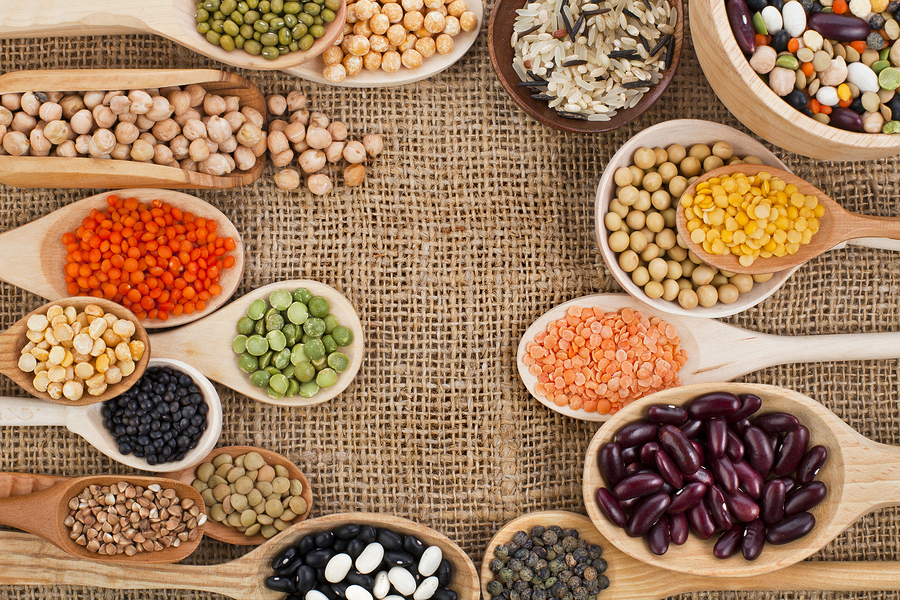 Alimentación equilibrada: Proteinas vegetales, lácteos y huevo